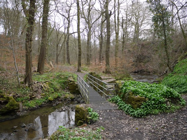 Footbridge, Walbottle Dene