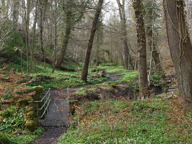 Footbridge and path, Walbottle Dene