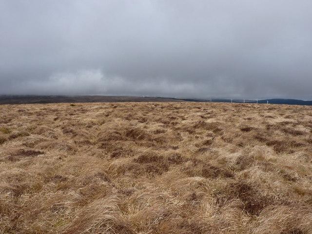 The summit of Ochr-lwyd (Point 544)