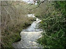 NN9328 : River Almond by Dave Fergusson