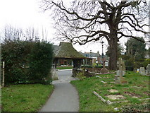 TQ1711 : St. Andrew's, Steyning: looking towards the lychgate by Basher Eyre
