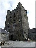 S1957 : Two-mile Borris Castle by dougf