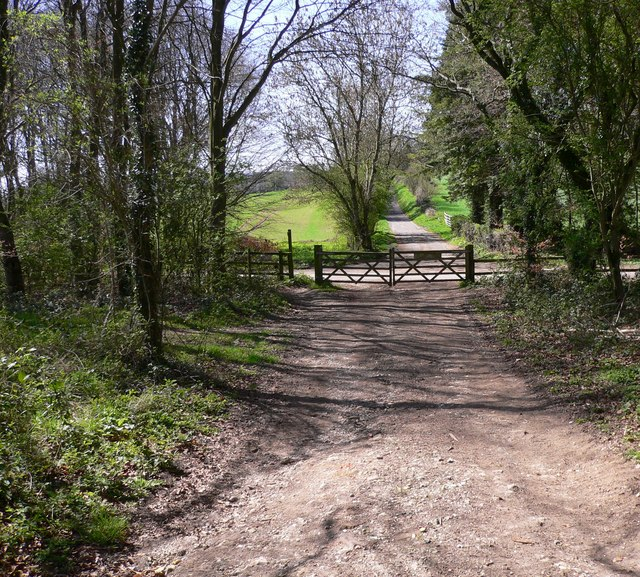 Bridleway reaches Hylter's Lane