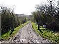NU1109 : Disused railway south-east of Lumby Law by Andrew Curtis