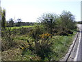TM3156 : Footpath to the B1078 Ash Road by Adrian Cable