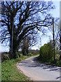 TM3054 : Loudham Hall Road by Geographer