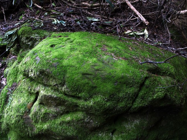 Prehistoric Rock Art in Lemmington Wood
