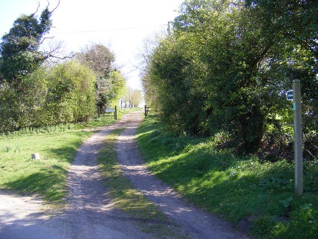 Bridleway to Moat Farm