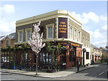 TQ3377 : The Olde Apple Tree, Peckham by Malc McDonald