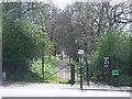 TQ3473 : Cox's Walk, SE22 by Malc McDonald