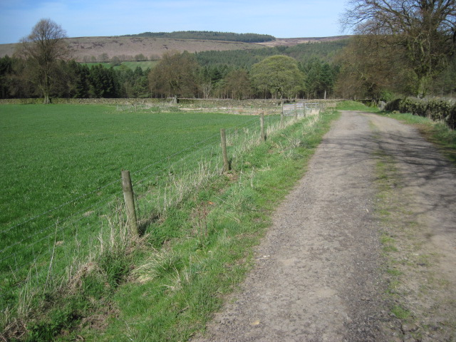 Footpath towards Beeley Plantation
