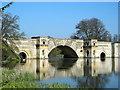 SP4316 : The Grand Bridge, Blenheim by Mark Percy