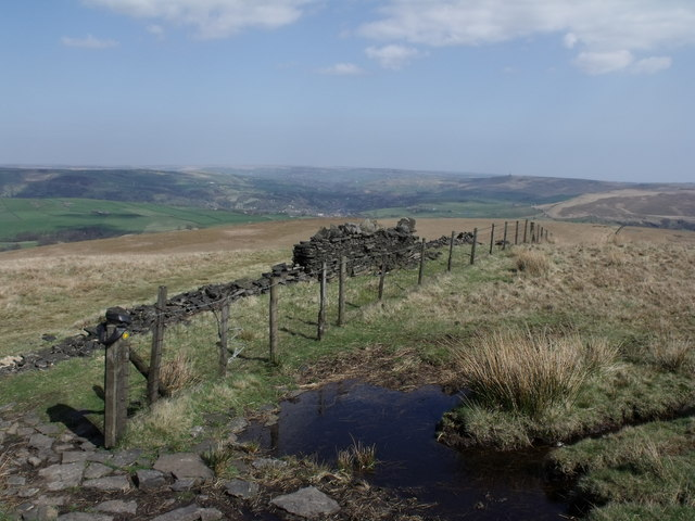 The view from Freeholds Top