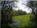 TM3169 : Footpath to Mill Road by Adrian Cable
