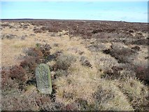 SD9620 : Boundary Stone #1 by Humphrey Bolton