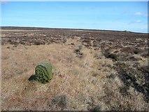 SD9620 : Boundary Stone #3 by Humphrey Bolton