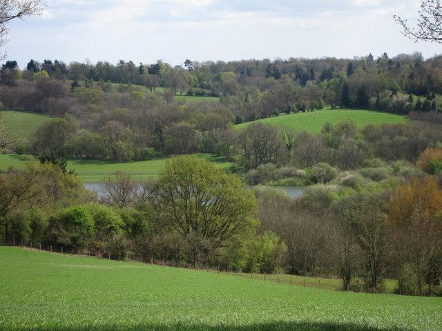 Countryside around Bewl Water