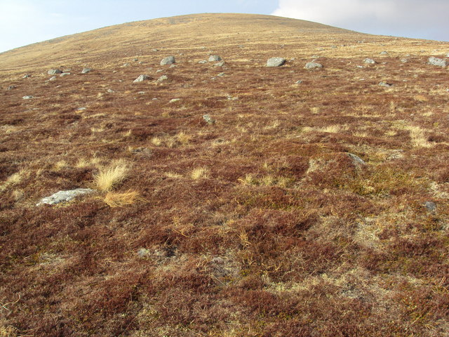 The slopes of Meall Glas Choire