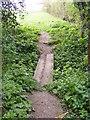 TM3366 : Footbridge on the footpath to Bruisyard Wood by Geographer
