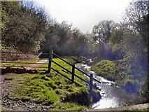 SJ8092 : Barrow Brook, Sale Ees by David Dixon