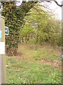 TM2346 : Footpath to the A12 Martlesham Bypass by Adrian Cable