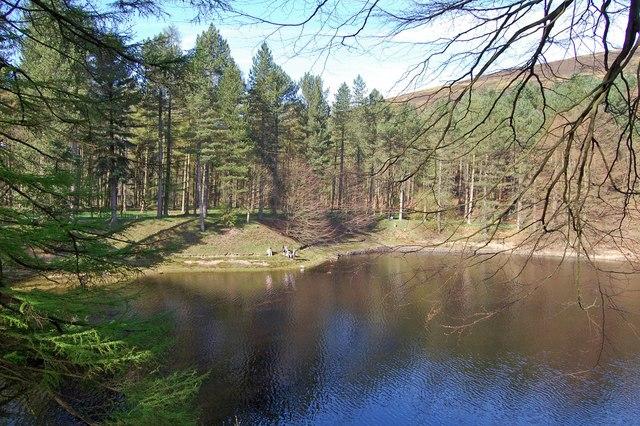 Hope Woodlands : Fairholmes