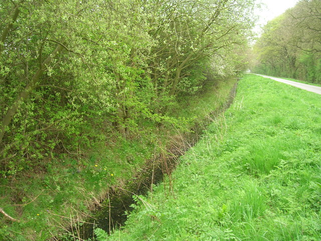 Drainage ditch beside Long Lane
