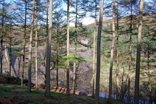 Hope Woodlands : Derwent Dam