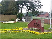 SU8652 : Fox by Colin Smith