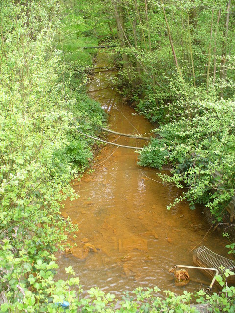 Polluted Stream by North Camp