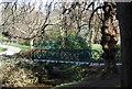 TQ8110 : Footbridge, Alexandra Park by N Chadwick