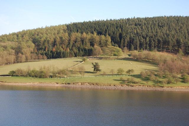 Hope Woodlands : Ladybower Reservoir