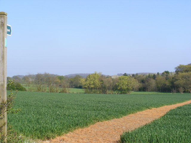 Footpath to Glemham Road & Holdans Lane