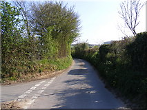 TM3464 : Glemham Road, Sweffling by Adrian Cable