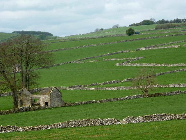 Hillside fields