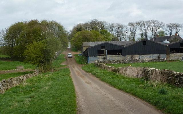 Lane past Hilltop Farm - uphill view