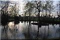 TQ2193 : Pond south of Mote End Farm by N Chadwick