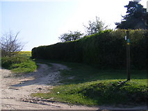 TM3669 : Footpath to Green Road by Adrian Cable
