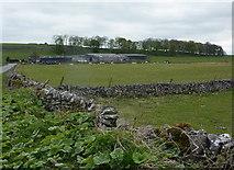 SK2158 : Towards Rockhurst Farm by Andrew Hill