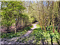 SD7314 : Jumbles Country Park by David Dixon