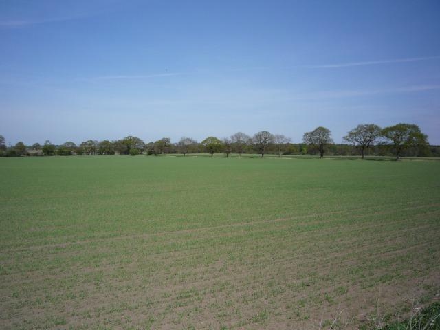 Farmland near Long Lane