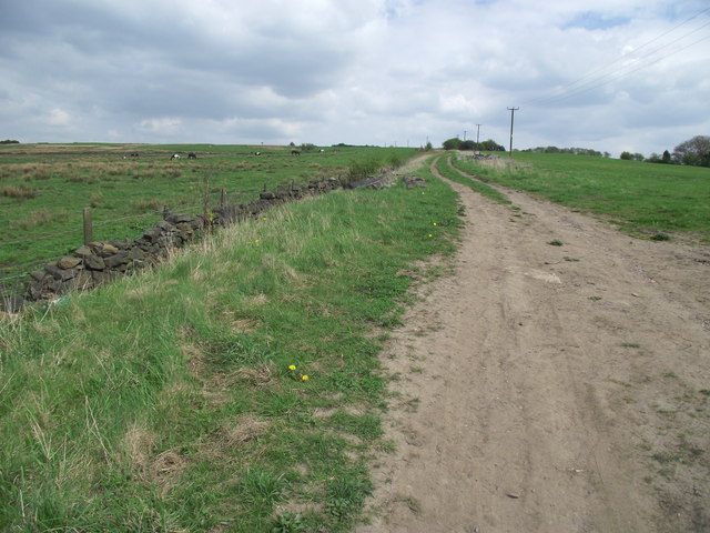 Track to Affetside