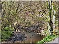 SD7315 : Bradshaw Brook, Jumbles Country Park by David Dixon