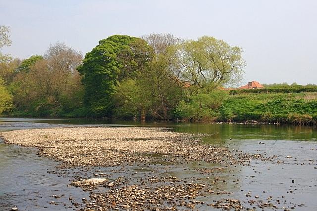 River Tees near Sockburn