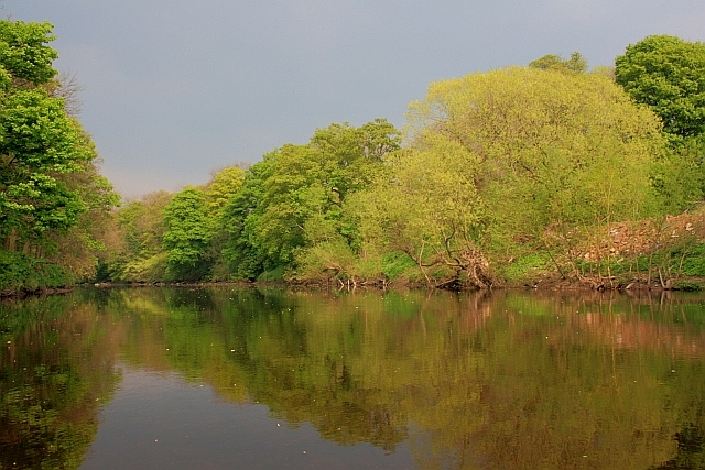 River Tees near Over Dinsdale