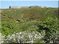 SX3852 : Tregantle Fort by Philip Halling