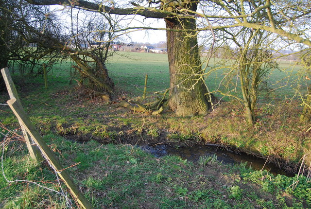Dollis Brook