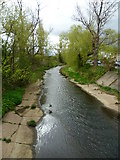 NT2273 : Water of Leith at Roseburn by kim traynor