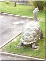 NZ3668 : Effigy of a Giant tortoise by Stanley Howe