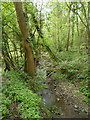 SO7098 : The Dean Brook near The Severn by Richard Law